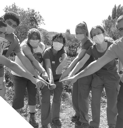 Incorpora · Llanero Solidario